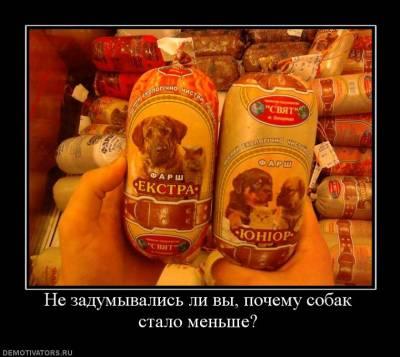 http://3mv.ucoz.ru/_pu/32/s14804282.jpg